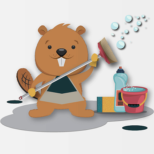 Beaver Maids Cleaning Services
